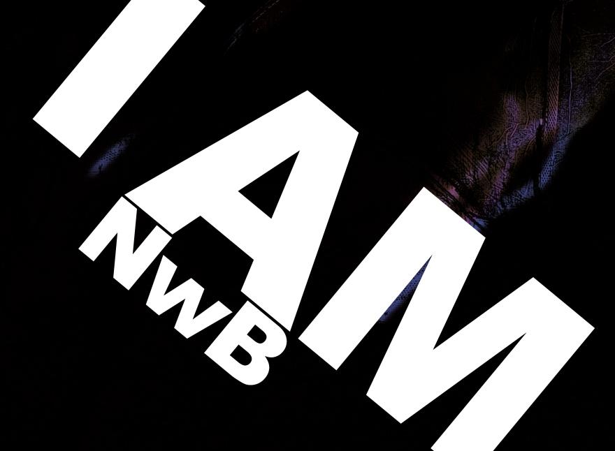 NWB 3.1