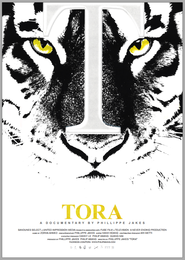 The Tiger project TORA. scr